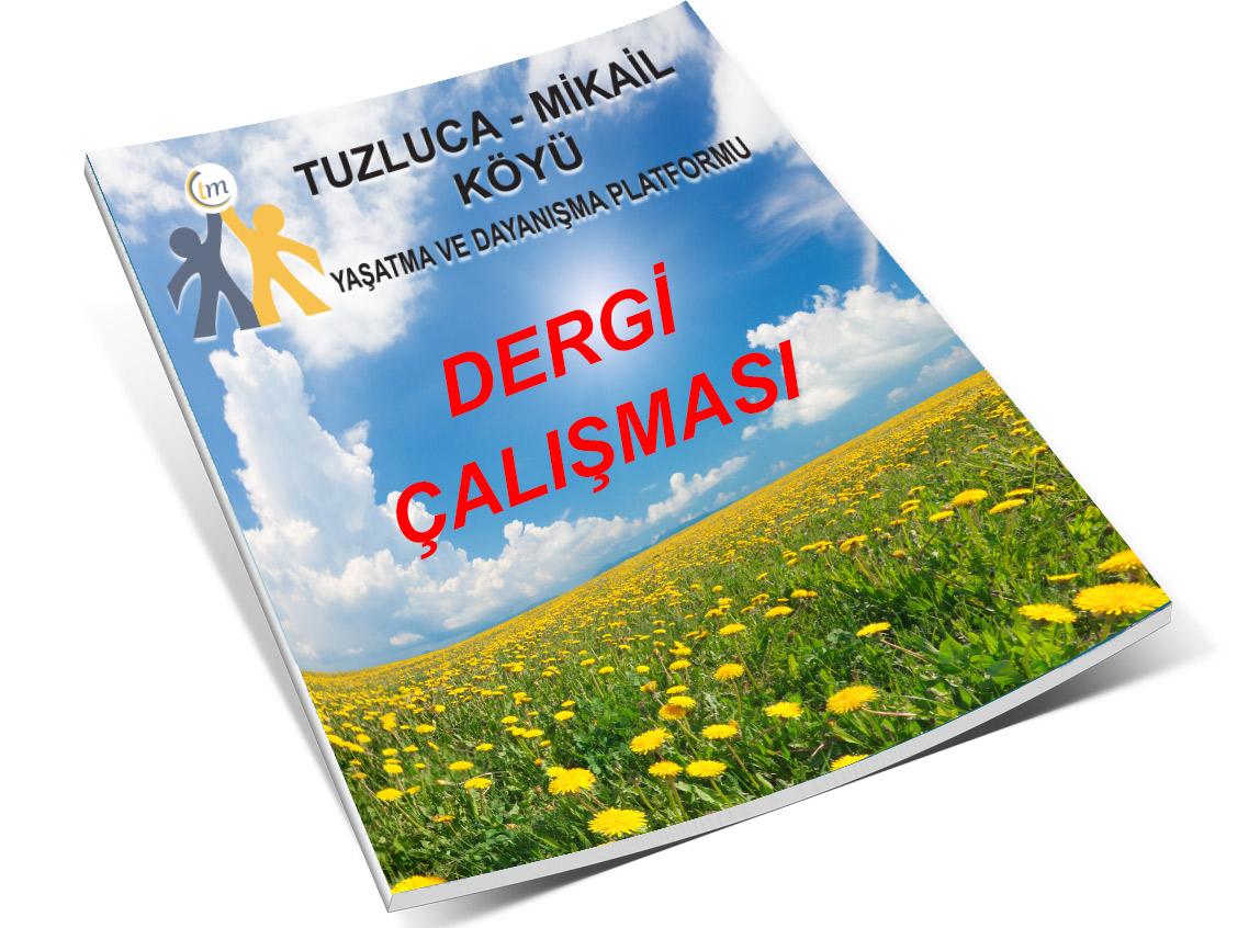 dergi-calisması